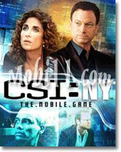 csi CSI NY
